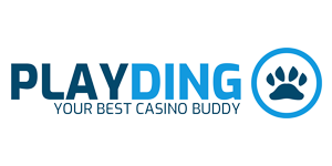 Playdingo Logo